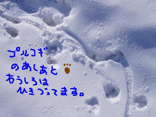 f0116384_17501480.jpg