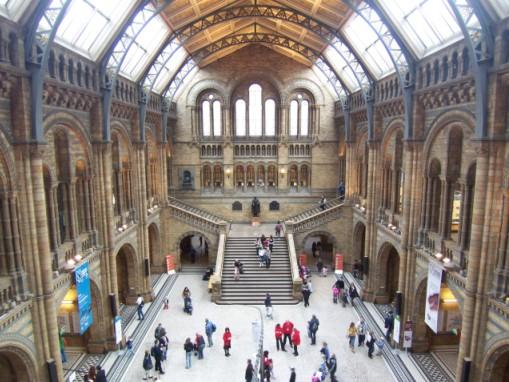 ロンドン旅行記-1: 自然史博物館(化石編)_c0071305_22585723.jpg