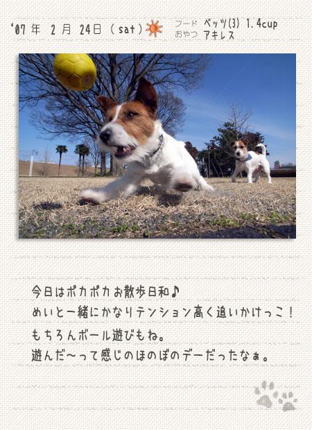 b0040323_0162986.jpg