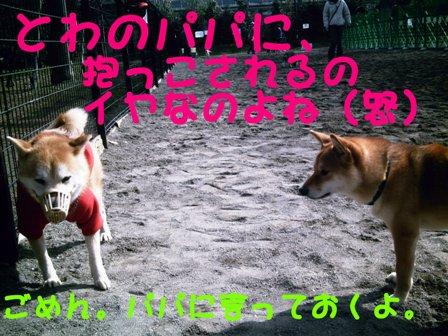 b0080342_1951528.jpg