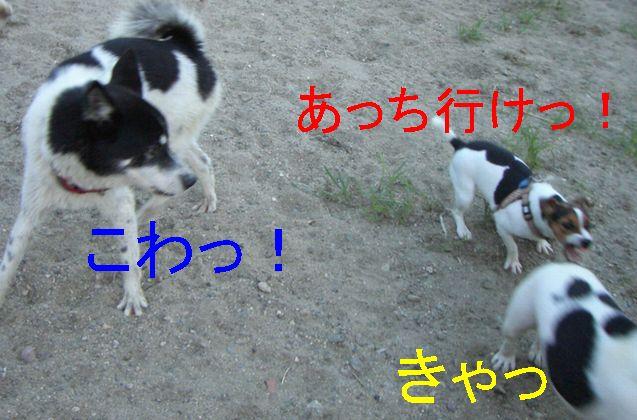 f0053952_12563771.jpg
