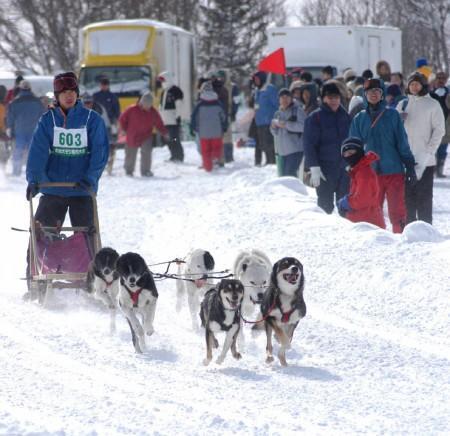 犬ぞり 日本最大のレース_b0052564_13202475.jpg