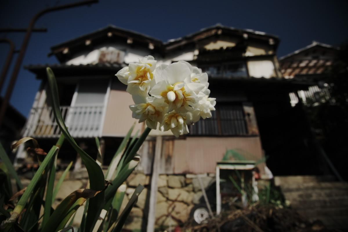 滋賀 琵琶湖 2_f0021869_18284778.jpg