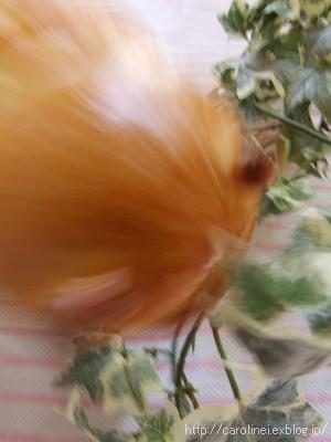 「芋たこなんきん」をパンにしたら_d0025294_10534138.jpg