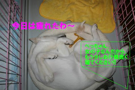 f0121712_2021173.jpg