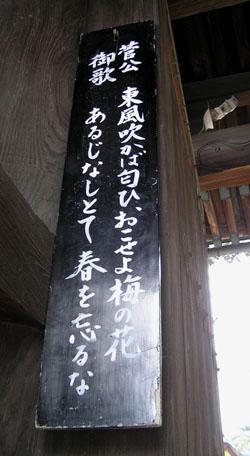 北野天満宮 梅花祭_e0048413_2343848.jpg