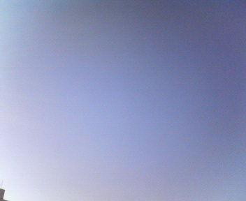 気持ちいいお天気だねっ_e0114246_15323415.jpg