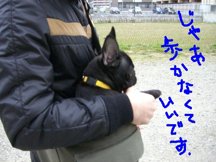 c0113109_03688.jpg
