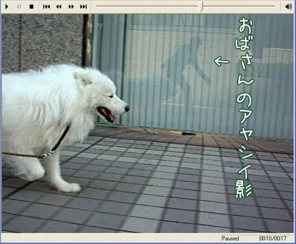c0062832_16454598.jpg