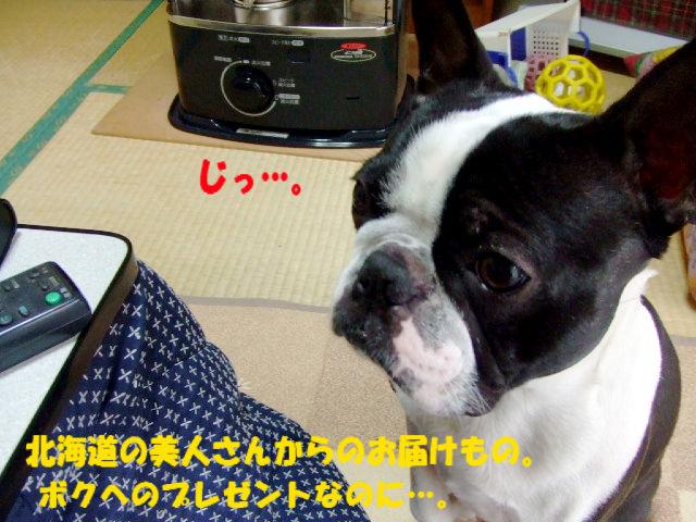 f0059334_10143091.jpg