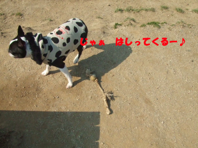 f0059334_10233036.jpg