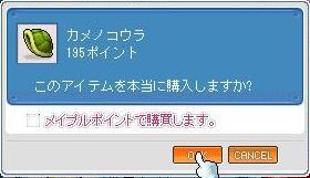 e0107543_338835.jpg