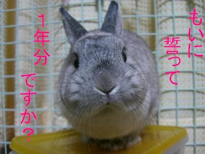 f0104057_20584192.jpg