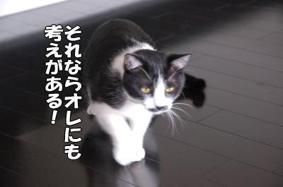 b0041182_18453787.jpg
