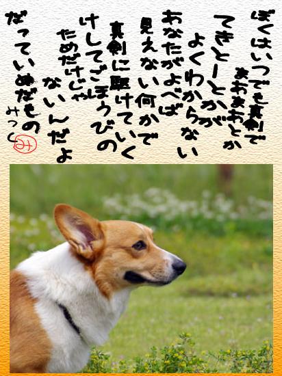 b0002585_19482963.jpg