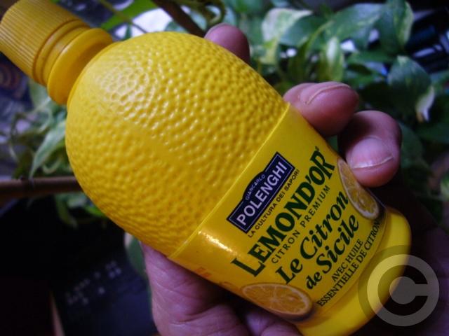 ■安易なレモン(PARIS)_a0014299_631163.jpg