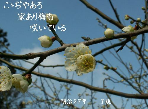 f0032418_10232141.jpg