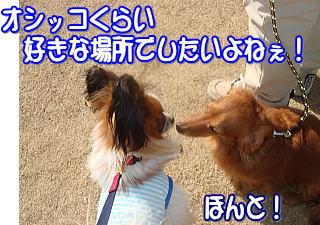 f0011845_23181441.jpg