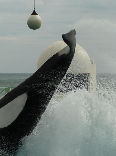 Splash!_f0018464_16381132.jpg