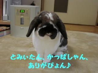 b0109692_16223635.jpg
