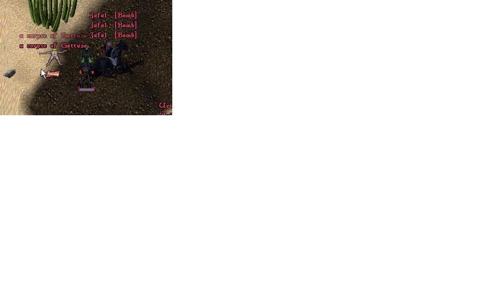 c0067994_3594623.jpg