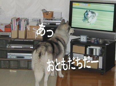 f0112407_13143848.jpg