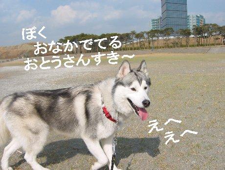 f0112407_323938.jpg