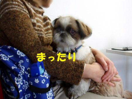 b0060071_022438.jpg