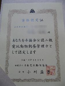 f0093803_19354362.jpg