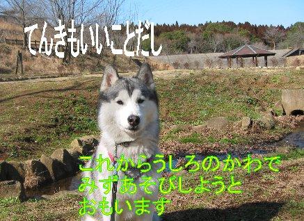 f0112407_0301691.jpg