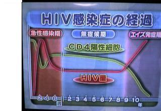 きょうの健康 HIV・エイズの最新治療_c0088525_1282690.jpg