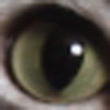 b0054042_1623098.jpg