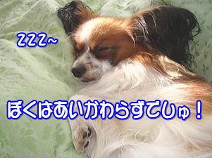 f0011845_3165796.jpg