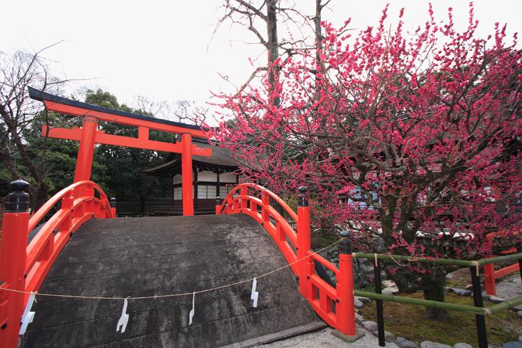 下鴨神社「流しびな」_e0051888_20242581.jpg