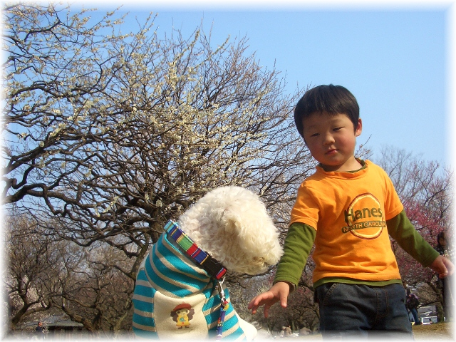 sunny day_d0083623_20532722.jpg