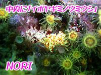 b0044726_14383665.jpg