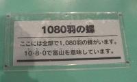 f0103873_23245016.jpg