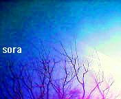 f0111989_220363.jpg