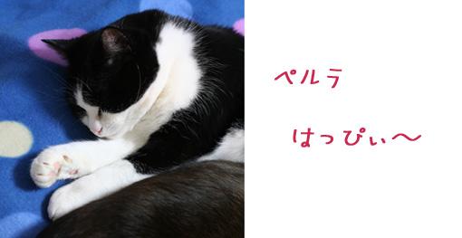 f0003598_22342180.jpg