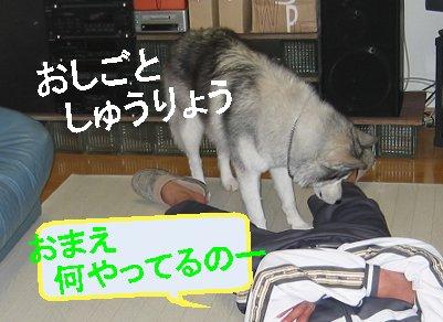 f0112407_14135148.jpg