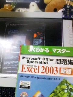 e0073048_011187.jpg