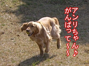 b0015963_13224018.jpg