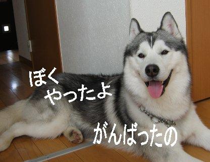 f0112407_2210126.jpg