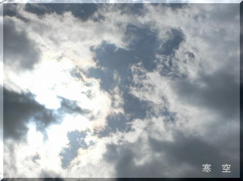 d0092026_200544.jpg