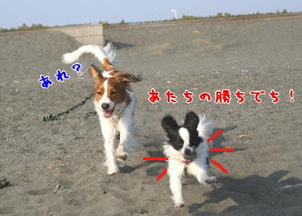 d0013149_0412271.jpg