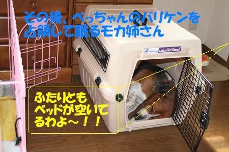 f0121712_10285069.jpg