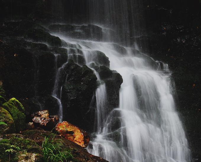 春の滝 ~木漏れ日を浴びて~_d0074828_2293071.jpg