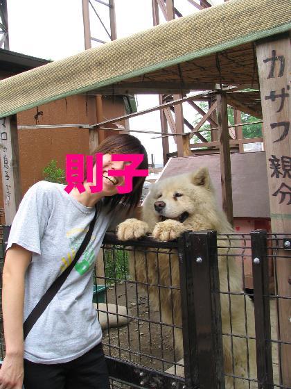 サモ友画像 2_f0128542_02725.jpg