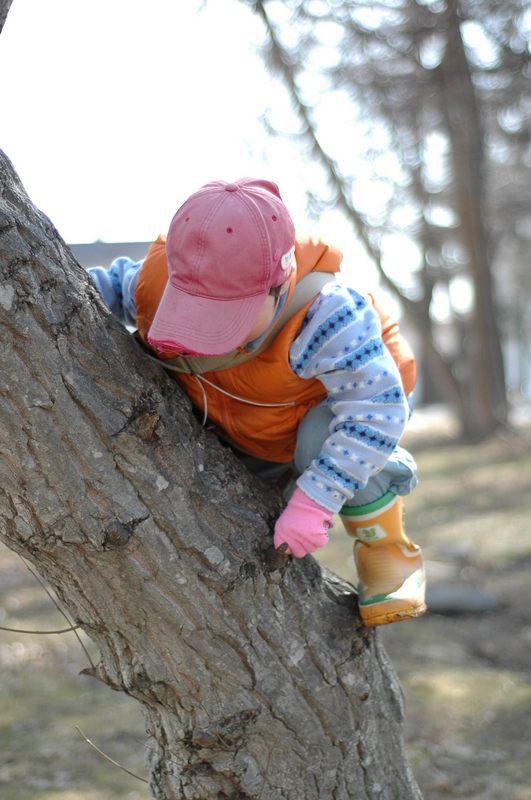 木に登る子供をみない_f0114954_17501385.jpg