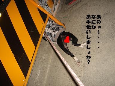 f0110199_22104518.jpg